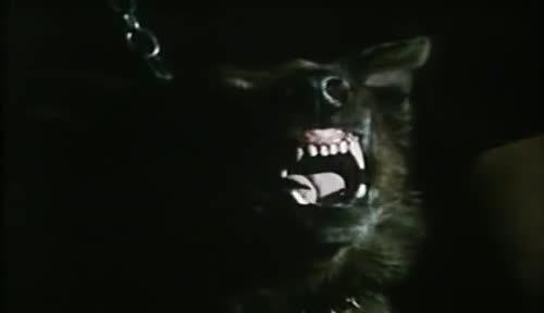 screamofwolf5