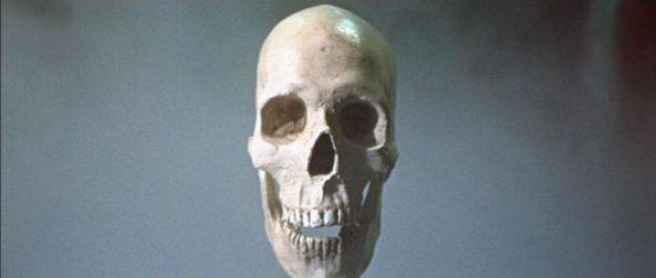 TheSkull5